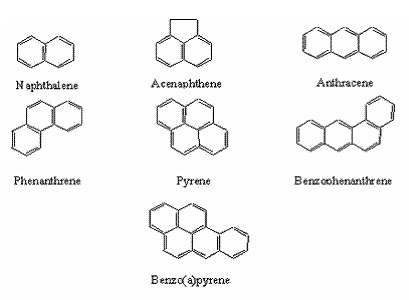 What are Polycyclic Aromatic Hydrocarbons